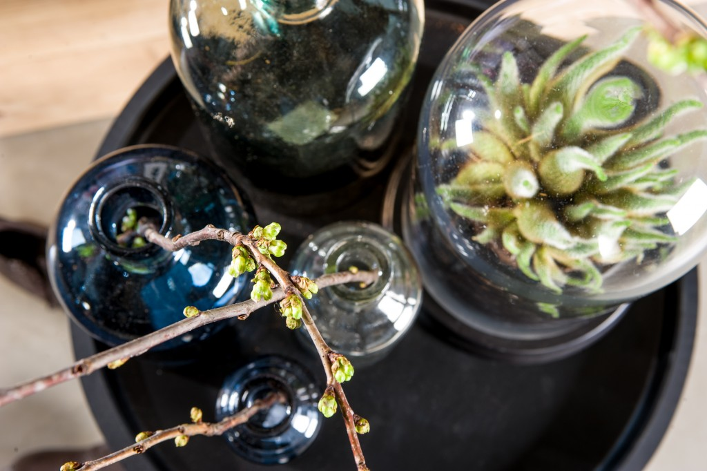 groen in interieur styling tips Livengo